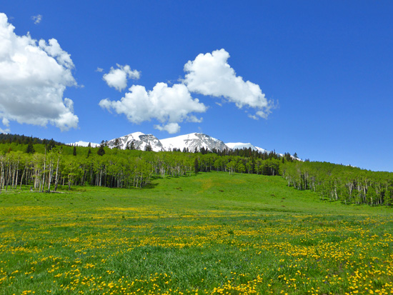 Mount Sopris from the Hay Park Trail